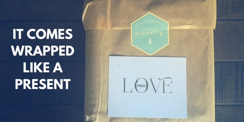 Enjoy my inkWELL liveWELL planner review!