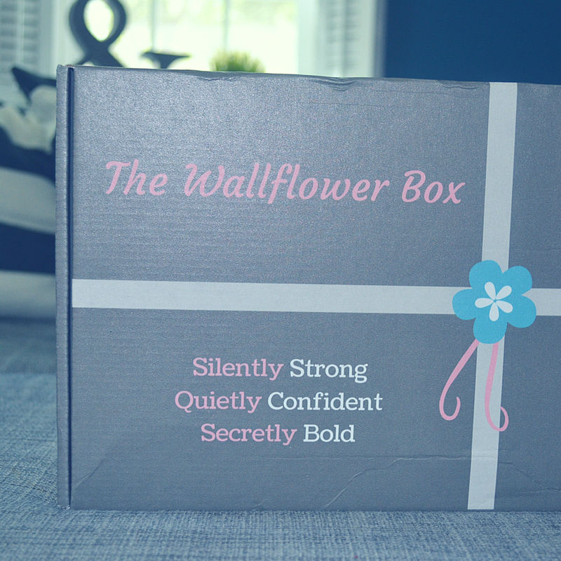Calling all introverts! There's an awesome subscription box just for you. Meet The Wallflower Box.