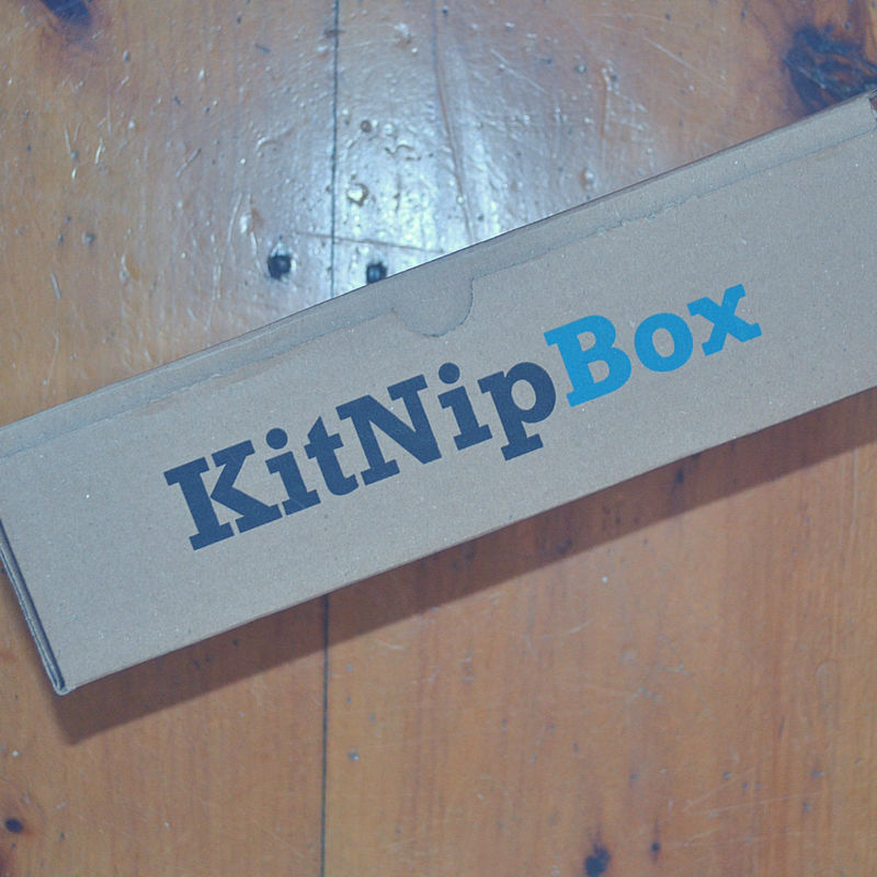 Kitnip is here! And, our kittens are freaking out.