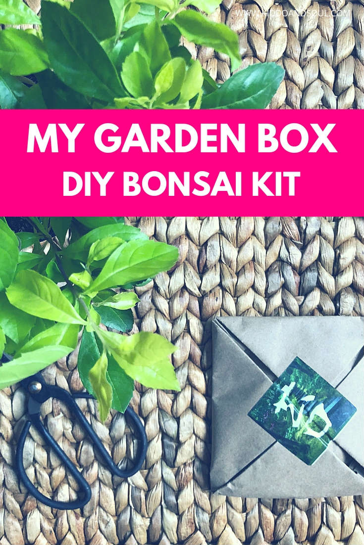 So excited to have My Garden Box back on the blog with another DIY gardening delivery.  This subscription box is amazing for anyone interested in planting things. Makes a great gifts (just ask my Mom) and is a fun way to introduce your kids to gardening!
