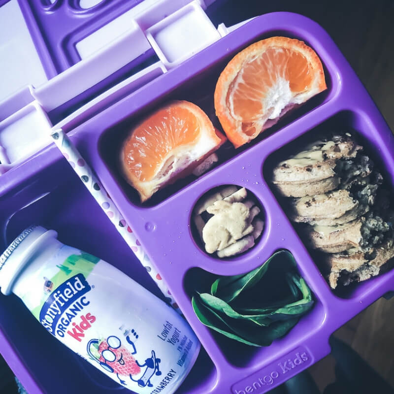 The Ultimate Guide to creating School Safe Lunches