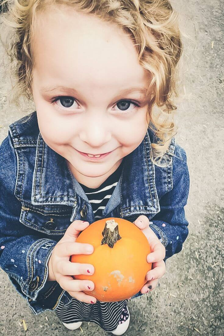 41 Fun things to do with kids this Fall (October and November Ideas!)
